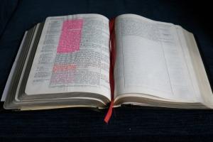 bible-2862518_1920